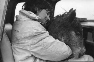 Nancy with wild colt, 1968